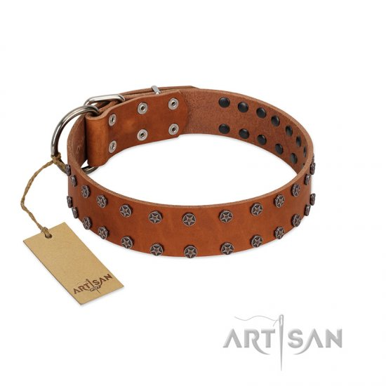 """Star Light"" Stylish FDT Artisan Tan Leather Amstaff Collar with Silver-Like Studs"