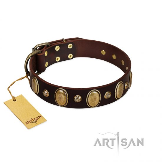 """Natural Grace"" FDT Artisan Handmade Decorated Brown Leather Amstaff Collar"