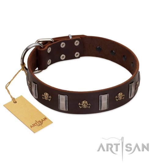 """War Chief"" FDT Artisan Genuine Brown Leather Amstaff Collar with Skulls and Plates"