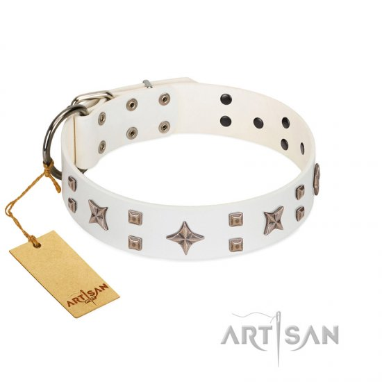 """Starry Heaven"" Designer Handcrafted FDT Artisan White Leather Amstaff Collar with Stars and Studs"
