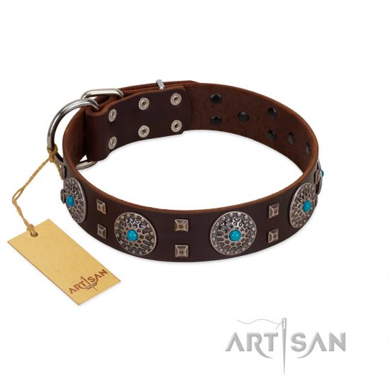"""Hypnotic Stones"" FDT Artisan Brown Leather Amstaff Collar with Chrome Plated Brooches and Square Studs"