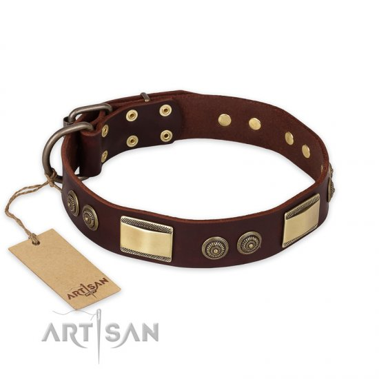 """Golden Stones"" FDT Artisan Brown Leather Amstaff Collar with Old Bronze Look Plates and Circles"