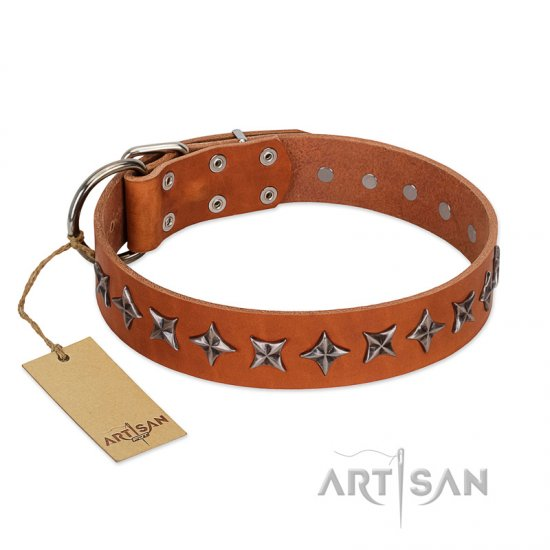 """Star Trek"" FDT Artisan Tan Leather Amstaff Collar Decorated with Stars"