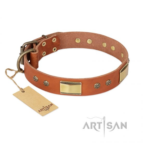 """Enchanting Spectacle"" FDT Artisan Tan Leather Amstaff Collar with Old Bronze Look Plates and Round Studs"