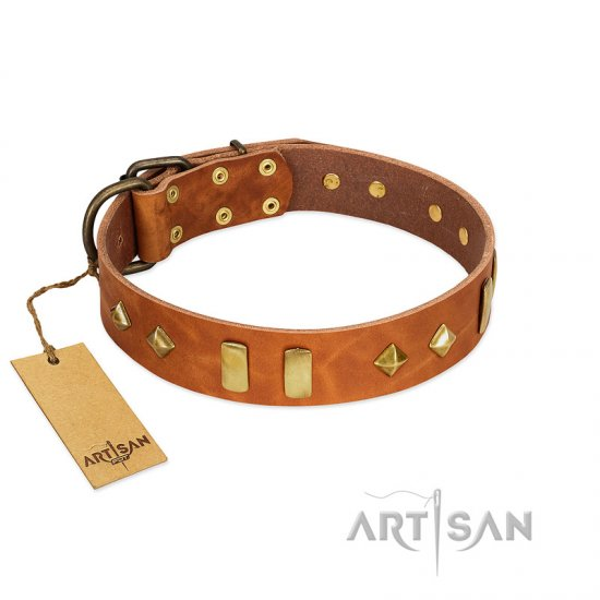 """Woofy Dawn"" FDT Artisan Tan Leather Amstaff Collar with Plates and Rhombs"