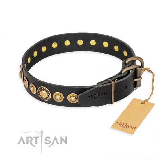 """Gold Mine"" FDT Artisan Black Leather Amstaff Collar with Amazing Bronze-Plated Round Studs"