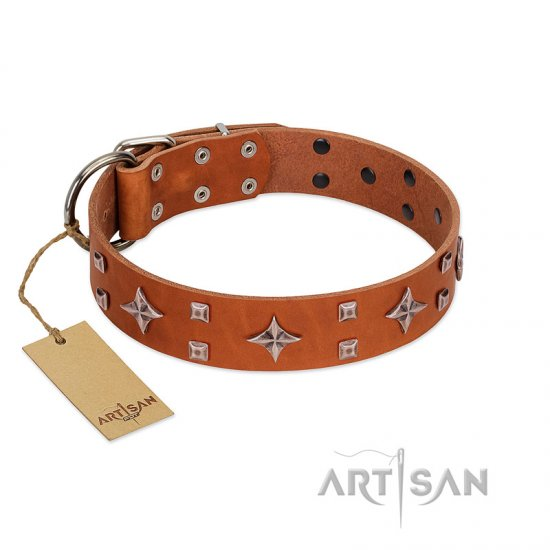"""Tawny Beauty"" FDT Artisan Tan Leather Amstaff Collar Adorned with Stars and Tiny Squares"