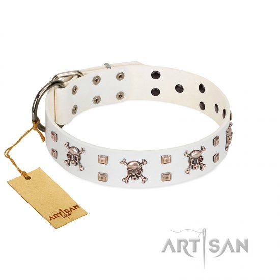 """Skull Island"" Premium Quality FDT Artisan White Designer Amstaff Collar with Crossbones and Studs"