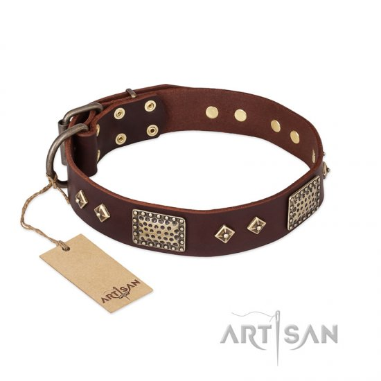 """Loving Owner"" FDT Artisan Decorated Leather Amstaff Collar with Plates and Studs"