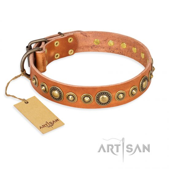 """Feast of Luxury"" FDT Artisan Tan Leather Amstaff Collar with Old Bronze Look Circles"