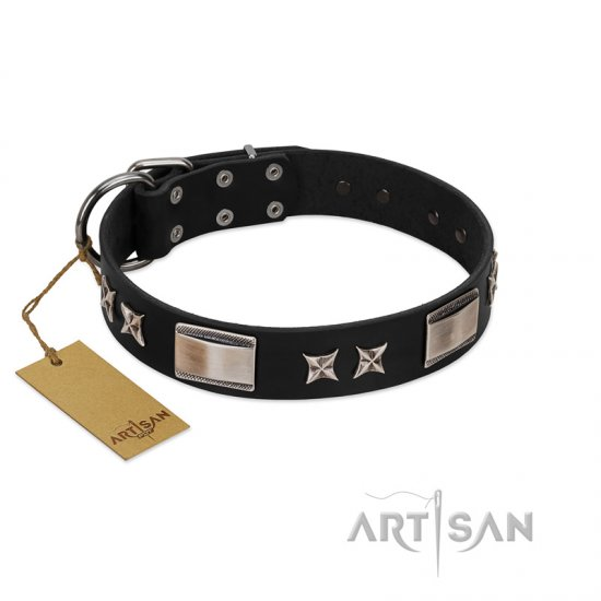 """Pitch Dark"" FDT Artisan Black Leather Amstaff Collar with Stars and Plates"