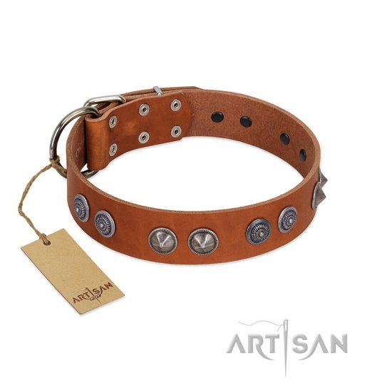 """Silver Necklace"" Incredible FDT Artisan Tan Leather Amstaff Colar with Silver-Like Adornments"