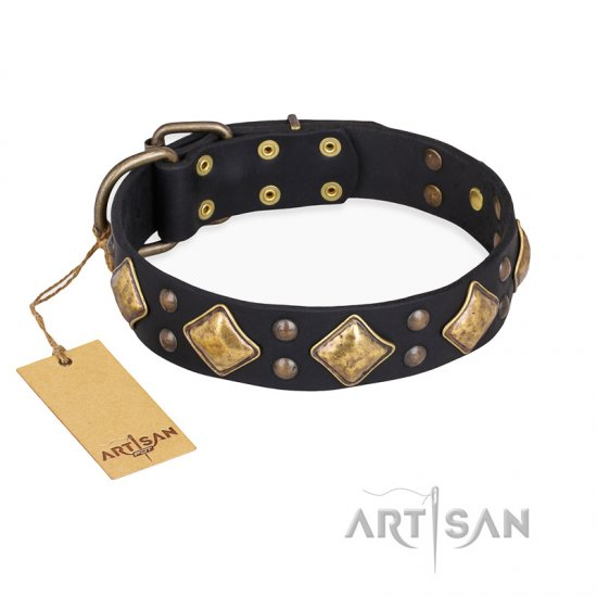 """Fancy-Schmancy"" FDT Artisan Studded Leather Amstaff Collar"
