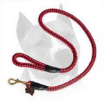 Cord Nylon Leash For Amstaff Dog Breed
