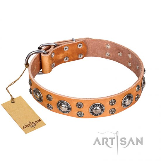 """Extra Sparkle"" FDT Artisan Handcrafted Tan Leather Amstaff Collar"