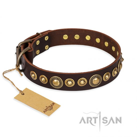 """Ancient Warrior"" FDT Artisan Fancy Leather Amstaff Collar with Old-Bronze Plated Decorations"