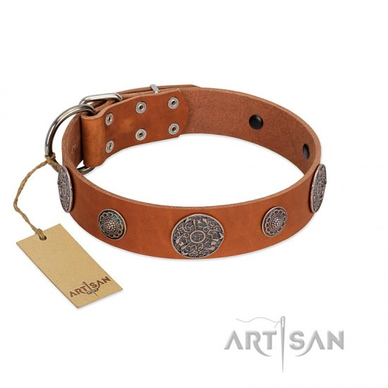 """Foxy Nature"" FDT Artisan Tan Leather Amstaff Collar with Chrome Plated Brooches"