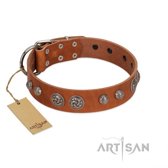 """Era Infinitum"" FDT Artisan Tan Leather Amstaff Collar Adorned with Chrome-plated Circles"