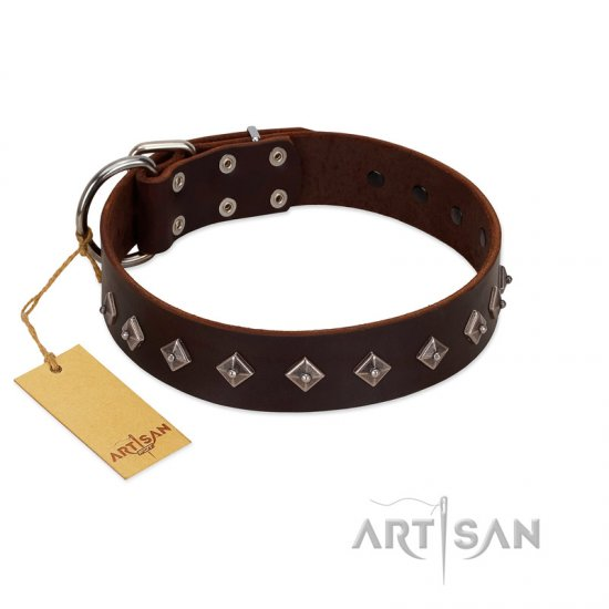 """Boundless Energy"" Premium Quality FDT Artisan Brown Designer Leather Amstaff Collar with Small Pyramids"
