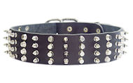 2 inch Leather Dog Collar with STUDS and SPIKES for Amstaff