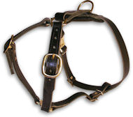 AMSTAFF Leather Dog Harness H7 for walking and tracking