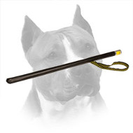 Loud Agitation Stick for Schutzhund Amstaff Training