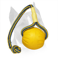 'Go get it' Colorful Foam Amstaff Training Ball with Nylon Rope - Medium