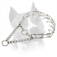 'Calm Down Effect' Amstaff Training Chain Prong Collar - 1/8 inch (3.2 mm) link diameter