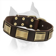 Designer Leather Dog Collar for Amstaff Dog Breed