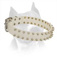 White Leather Amstaff Collar with 2 Rows of Spikes