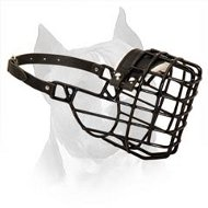 Amstaff Wire Dog Muzzle For Winter Season With Black Rubber Cover