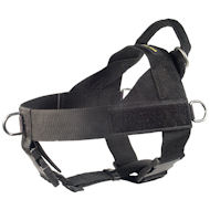 Nylon Harness for Canicross-Amstaff Harness