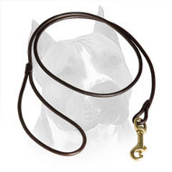 Elegant Round Leather Amstaff Lead for Dog Shows
