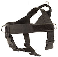 Nylon Companion Safety Harness for Amstaff