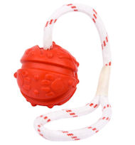 Similar to Everlasting Fun Ball on a Rope for Amstaff