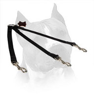 All-Weather Nylon Amstaff Coupler for Walking 3 Dogs