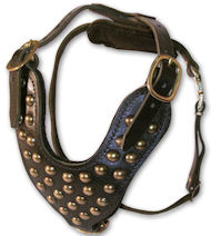 Two-Ply Latigo Dog Harness with Studs for Amstaff