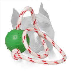 Rubber Training Amstaff Ball Nylon String
