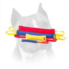 Amstaff French Linen Bite Set for Retrieve Training