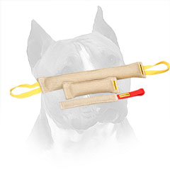 Jute Bite Training Set for Amstaff with Nylon Loops