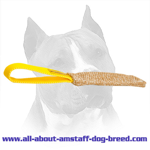 Bite Amstaff Tug Jute For Puppy Training