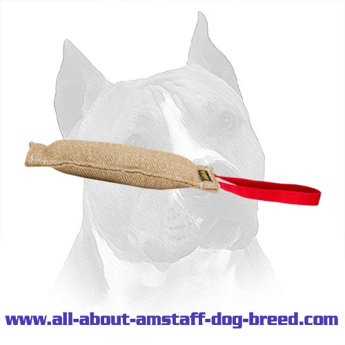 Amstaff Jute Training Tag Manually Stitched Edges