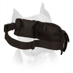 Amstaff Nylon Treat Pouch for Walking and Training