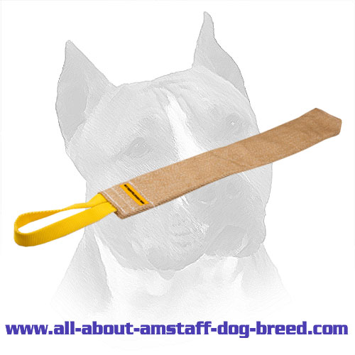 Training Amstaff Jute Rag With Wide Bite Area