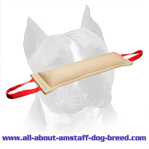 Jute Training Amstaff Tug With Stitched Edges