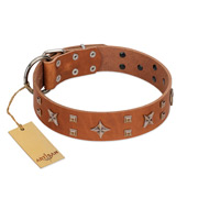 """Dreamy Gleam"" FDT Artisan Tan Leather Amstaff Collar Adorned with Stars and Squares"