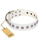 """Flower Boom"" FDT Artisan White Leather Amstaff Collar"