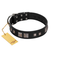 """Foregone Riches"" FDT Artisan Black Leather Amstaff Collar with Old Silver-like Square Studs and Pyramids"