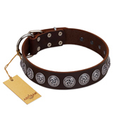"""Charming Circles"" FDT Artisan Brown Leather Amstaff Collar with Silver-like Studs"