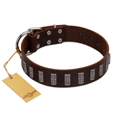 """Brown Lace"" Handmade FDT Artisan Brown Leather Amstaff Collar for Everyday Walks"